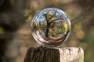 Crystal Ball Nature